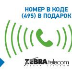 Номер в подарок от Zebra Telecom при подключении «Виртуальной АТС» за WebMoney