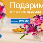 Ко Дню знаний Flawery.ru дарит скидку 500 рублей на любой букет