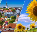 Отправляйтесь в летние путешествия c WebMoney Travel