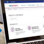 Оплата налогов и госпошлин доступна за WebMoney на gosuslugi.ru